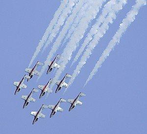 snowbirds11.jpg