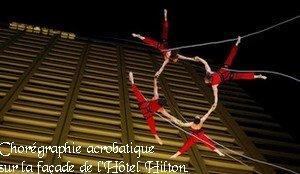 acrobates11.jpg